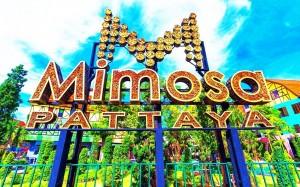 Mimosa entrance
