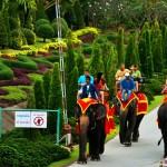 东芭乐园 (Nong Nooch Tropical Garden)